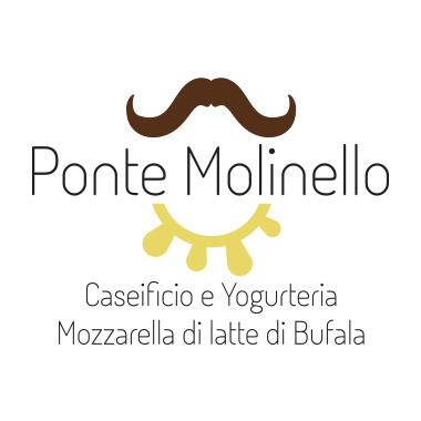 Ponte Molinello mozzarella di latte di bufala